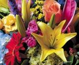 Calendar de perete Flowers 2014 - Luna August