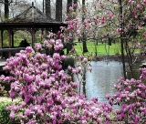 Calendar de perete Gardens 2014 - Luna Mai