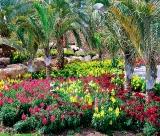 Calendar de perete Gardens 2015 - LunaAugust