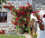 Calendar de perete Gardens 2015 - LunaIulie