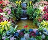 Calendar de perete Gardens 2015 - Lunafebruarie