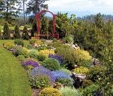 calendar de perete gardens 2016 luna Iunie