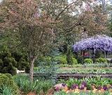 calendar de perete gardens 2016 luna Noiembrie