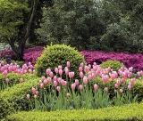 Calendar de perete gardens 2017 luna Mai