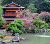 06_Iunie_Gardens