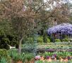11_Noiembrie_Gardens