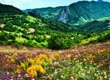 Calendar de perete Romania 2015 - luna iunie