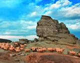 calendar perete romania pitoreasca - Luna februarie