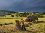 Calendar de perete Rural 2014 - Luna August