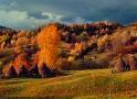 Calendar de perete Rural 2015 - Luna Noiembrie