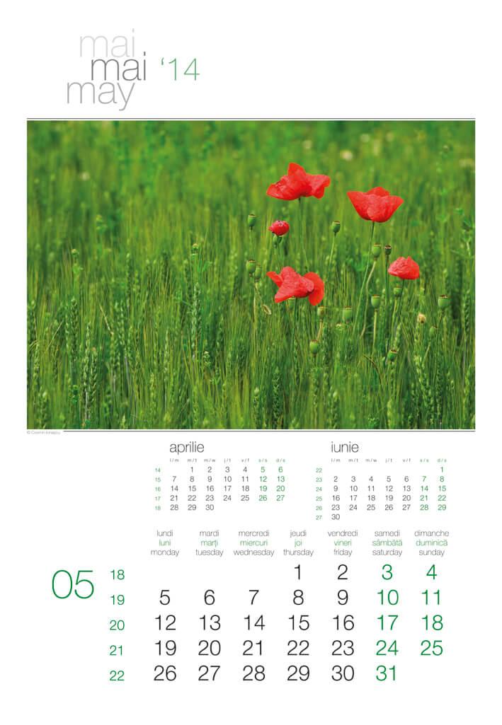 Calendar de perete Green 2014 - fila interior