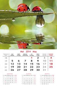 Calendar de perete Extravaganza 2014 - fila interior