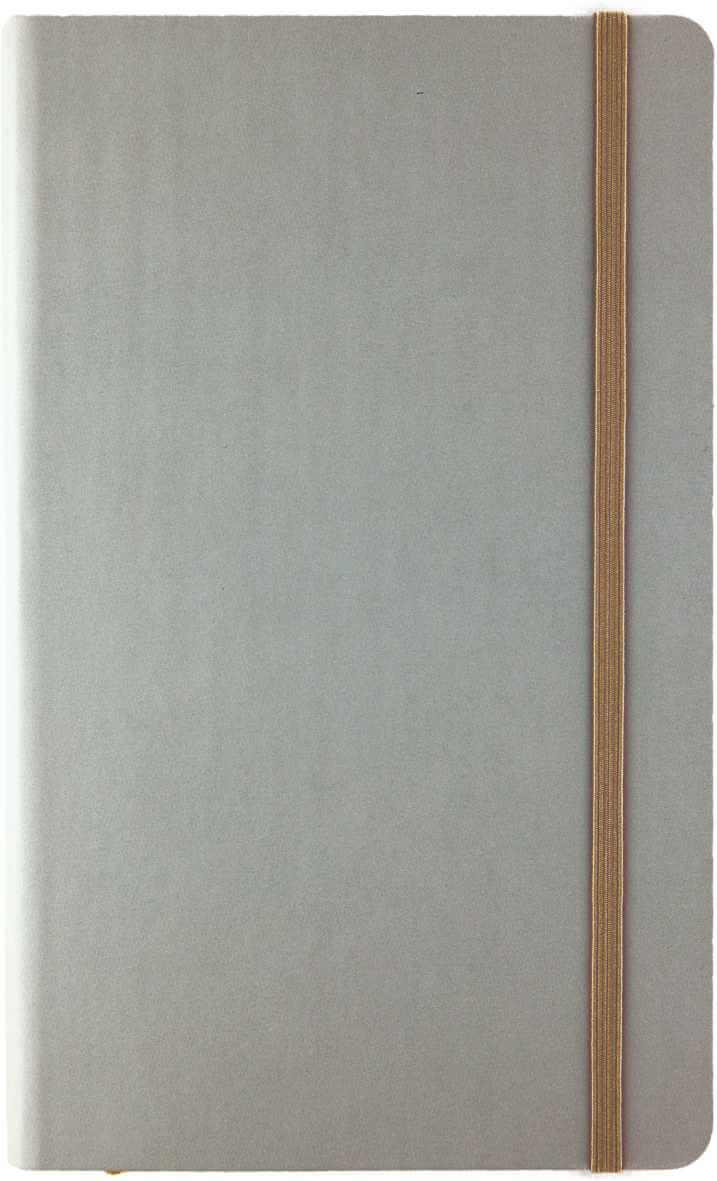 notes-tucson-flex-argintiu