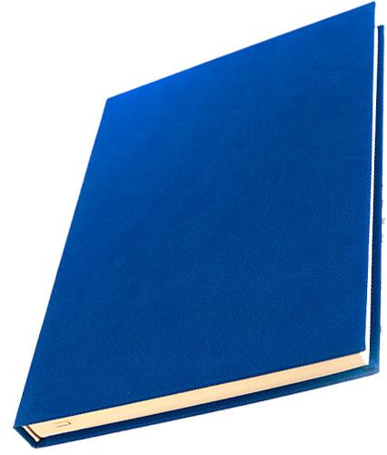 sette albastra