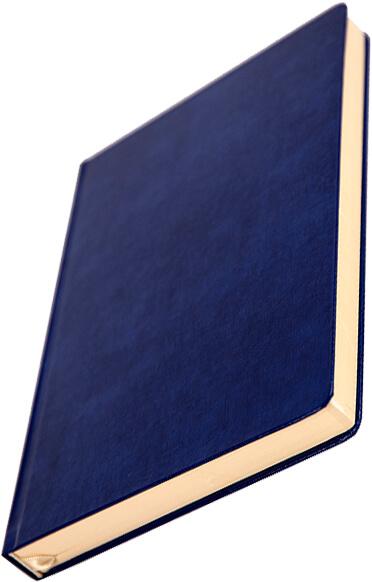 agenda-fixed-piele-naturala-model-2017-albastra