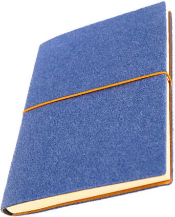 agenda ted albastra