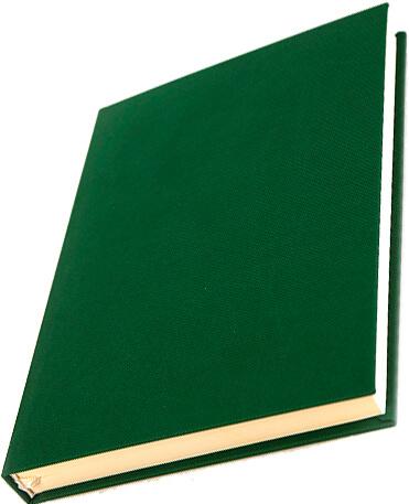 combi verde